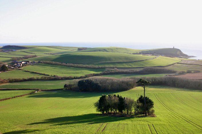Kimmeridge Farmhouse - Tree Island