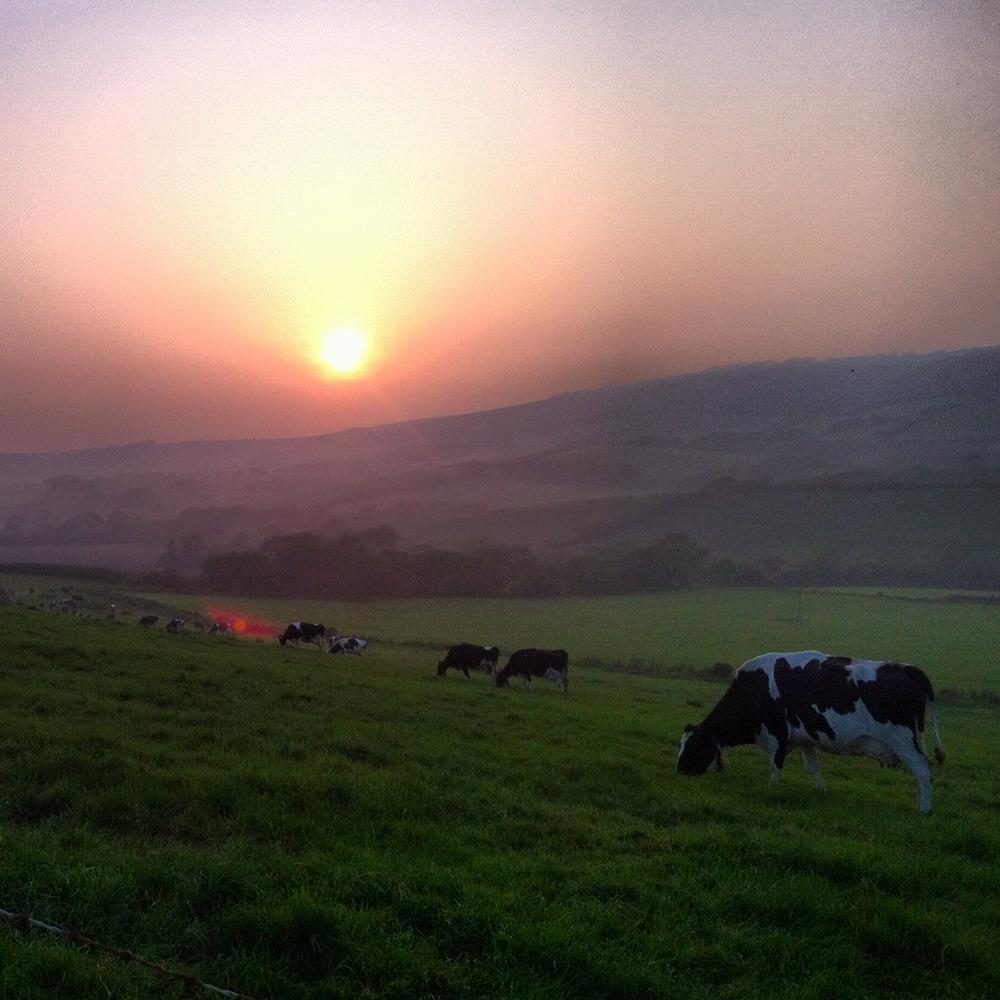 Kimmeridge Farmhouse - The Farm 06