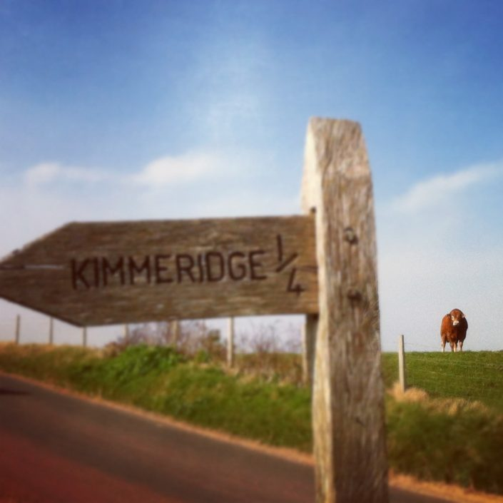 Kimmeridge Farmhouse - The Farm 11