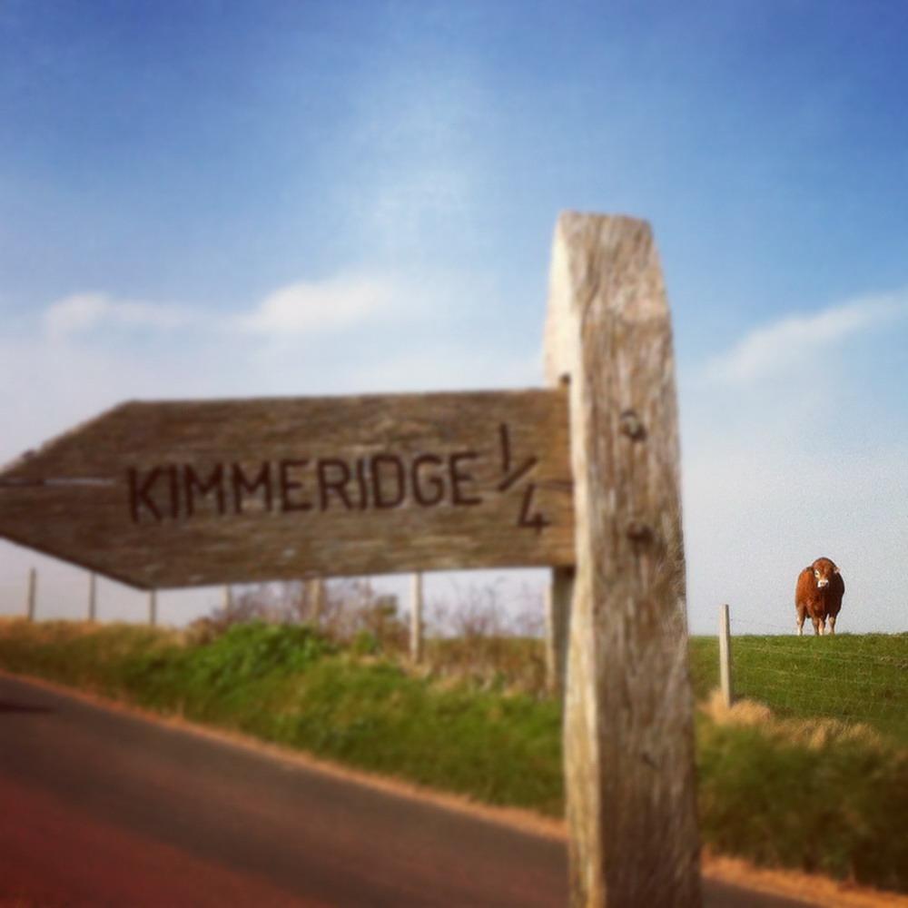 Kimmeridge Farmhouse - The Farm 11